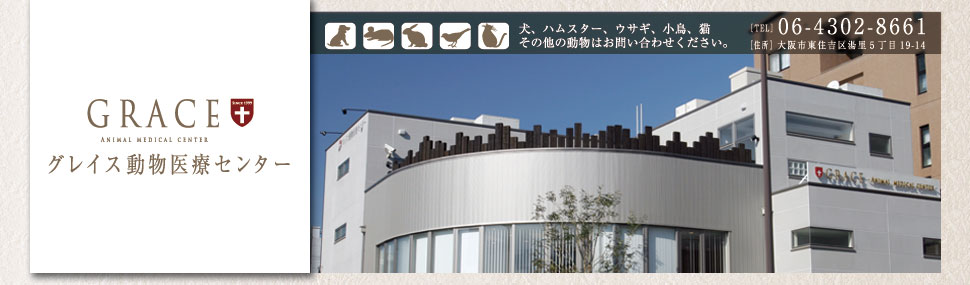 診察時間、診察予約 | グレイス動物医療センター|大阪市東住吉区,平野区